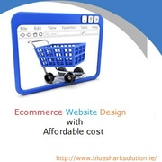 Get innovative ecommerce website design with affordable cost